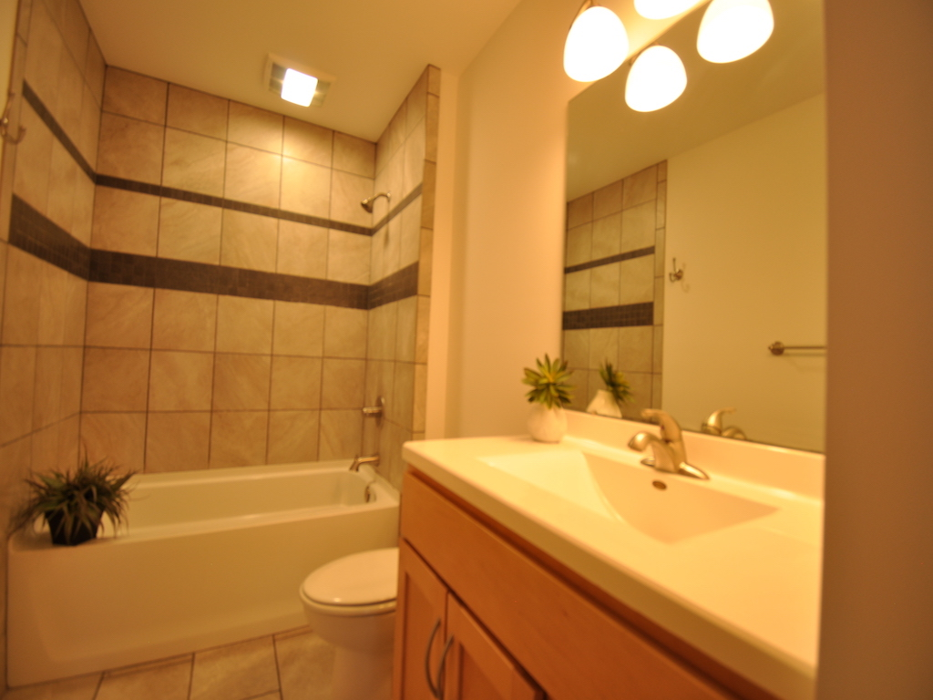 1020 Neely 5 bedroom BSU home rental in muncie bath photo