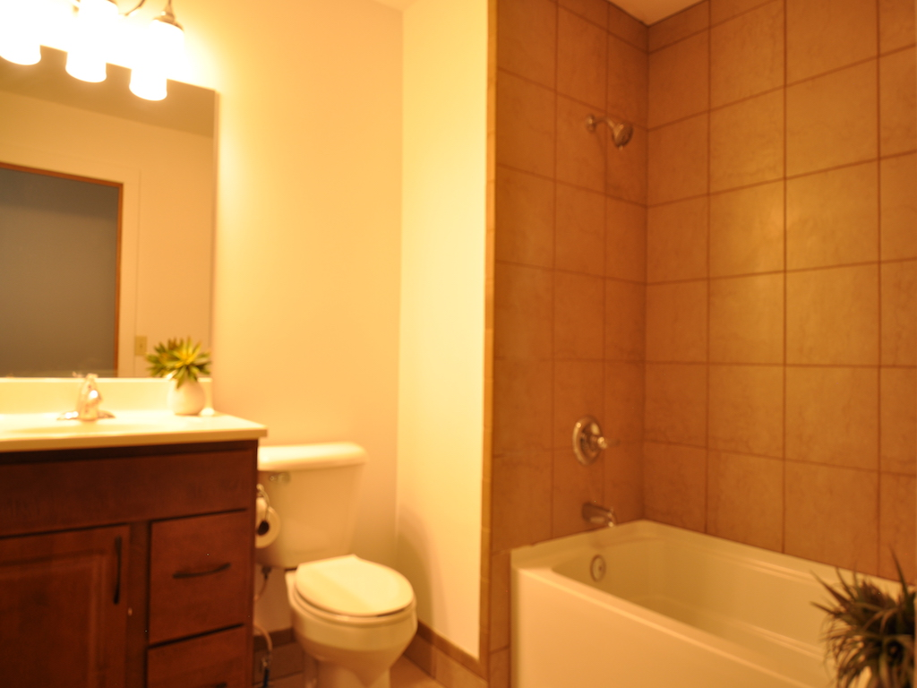 1100 Ashland 4 bedroom Ball State house for rent in Muncie bathroom photo
