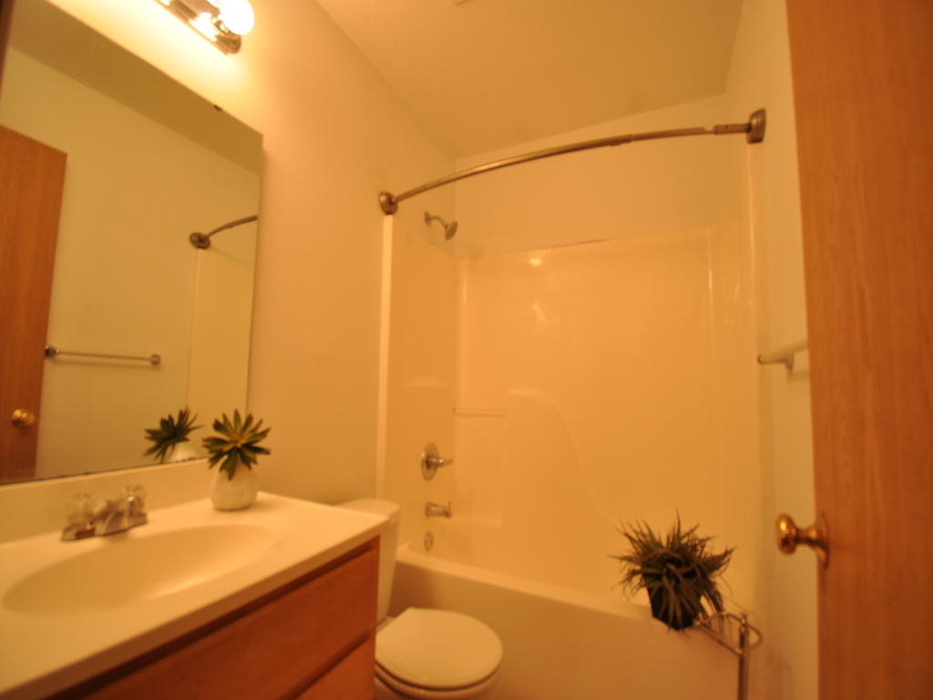 1125 abbott 4 bedroom BSU off campus house for rent bathroom photo
