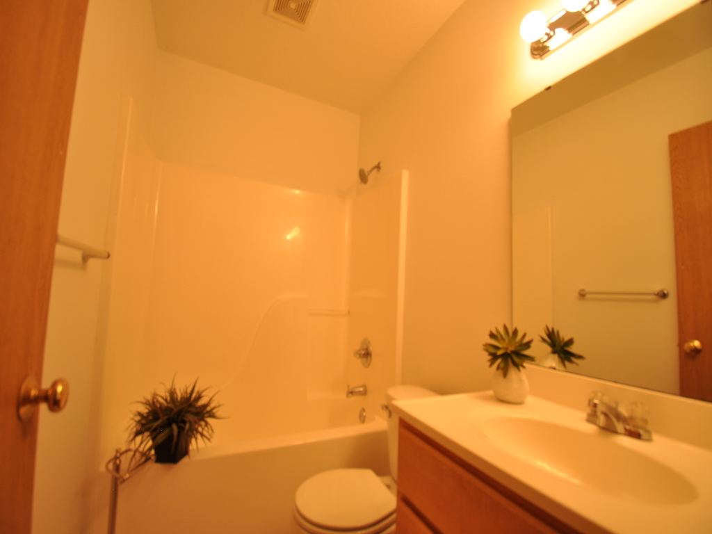 1125 abbott 4 bedroom house near ball state for rent in muncie bathroom photo