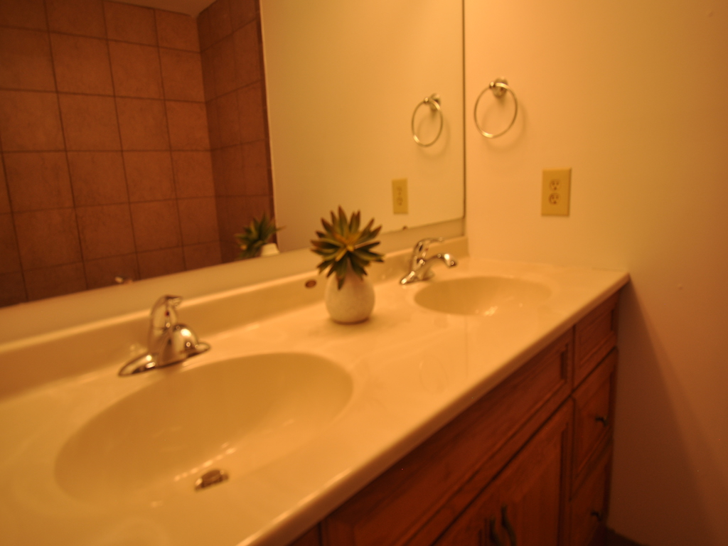 119 Calvert 6 bedroom BSU house for rent in muncie bathroom photo