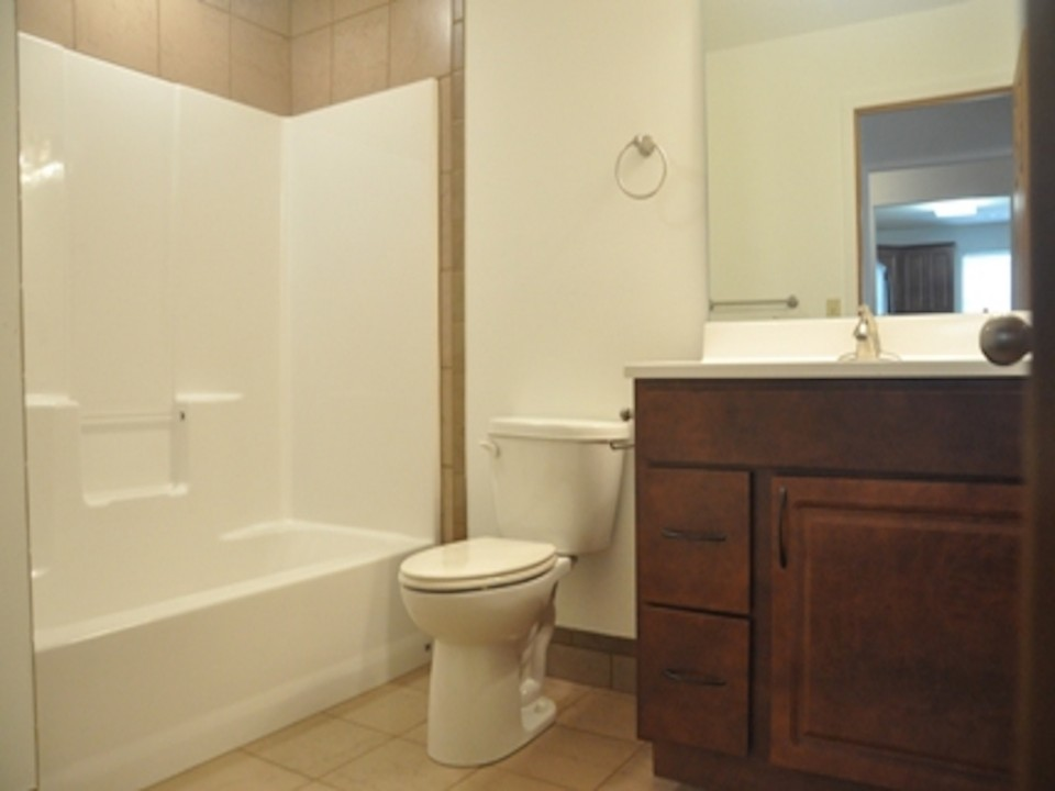 1113 Abbott 3 bedroom house for rent near BSU bathroom photo